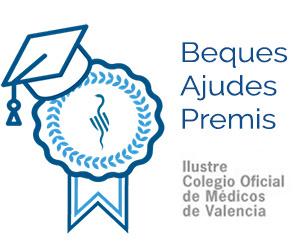 Beques, Ajudes i Premis ICOMV